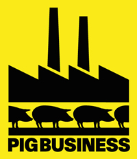 www.pigbusiness.co.uk